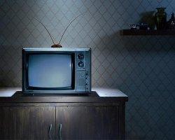В Минской области началась трансляция 3-го мультиплекса