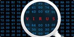 Интернет-пользователи Могилевской области подверглись вирусным атакам