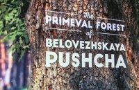 Телекомпания Discovery Communication сняла фильм о Беловежской пуще