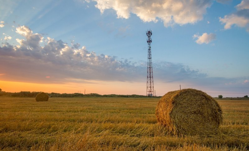 beCloud и A1 запустят LTE-800 в Гомельской области (дополнено)